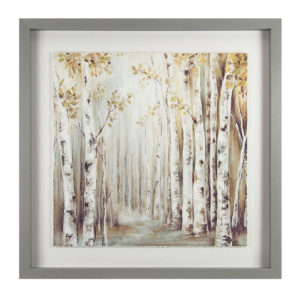 Sunset Birch Forest Picture